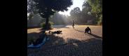 Athletik Training - Potsdamer Platz