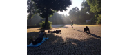 Athletik Training - Park am Gleisdreieck