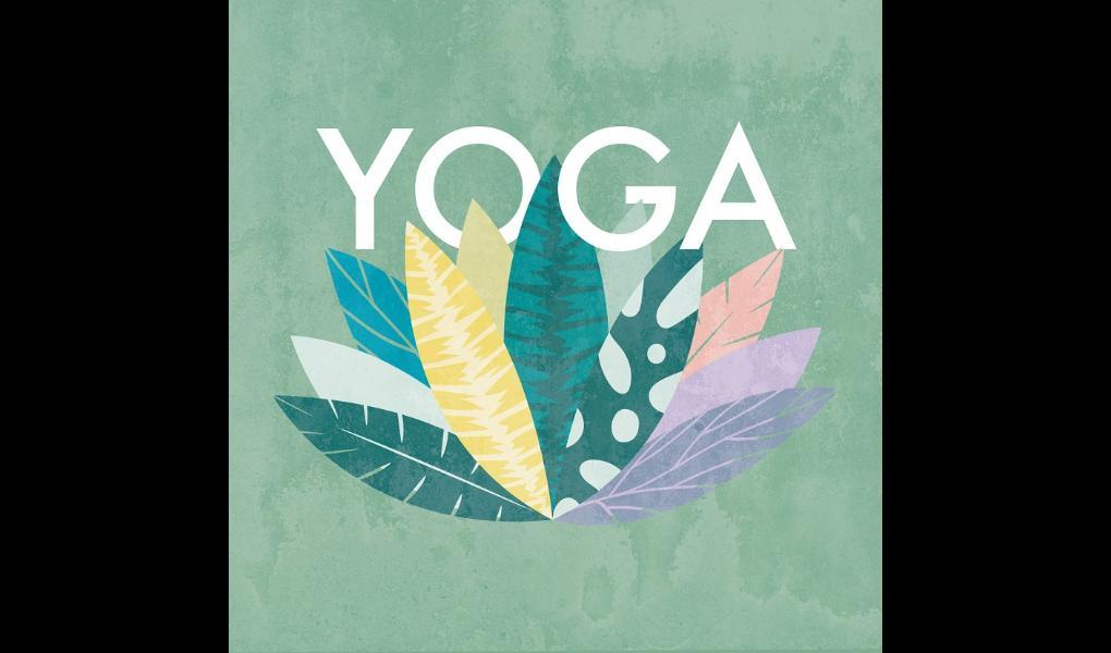 Gym image-Vinyasa Yoga