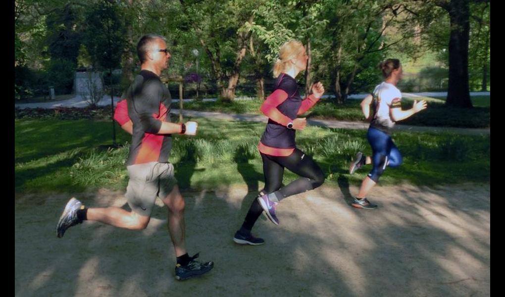 Gym image-runcademy - Ausdauer & Athletik