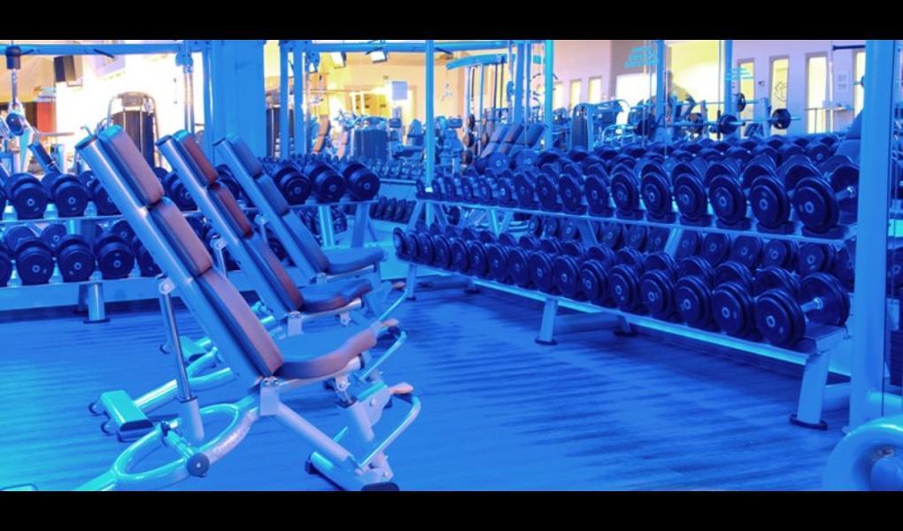 Studio Foto-TopFit Fitness & Wellness