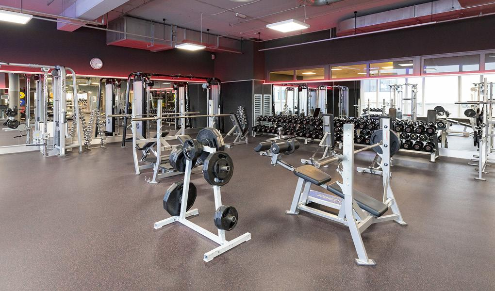 Gym image-Fitness First - Haidhausen