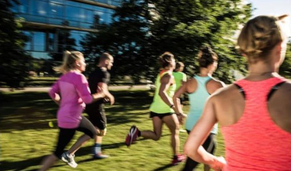 Gym image-original bootcamp - Spielplatz am Schlosspark