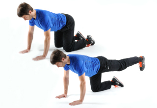 Vierfüßler Hüftstrecken - effektive Übung gegen Rückenschmerzen!