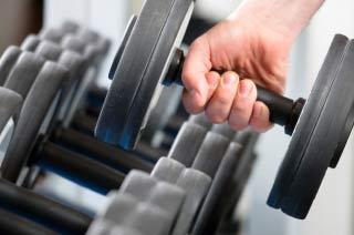 Trainingsplan - Übungsauswahl